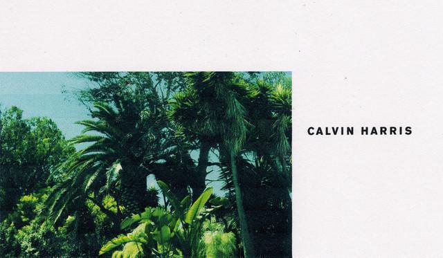 Calvin Harris - Slide